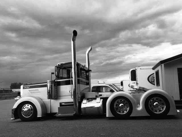 Peterbilt 379 Tandem 1993 Daycab Semi Trucks