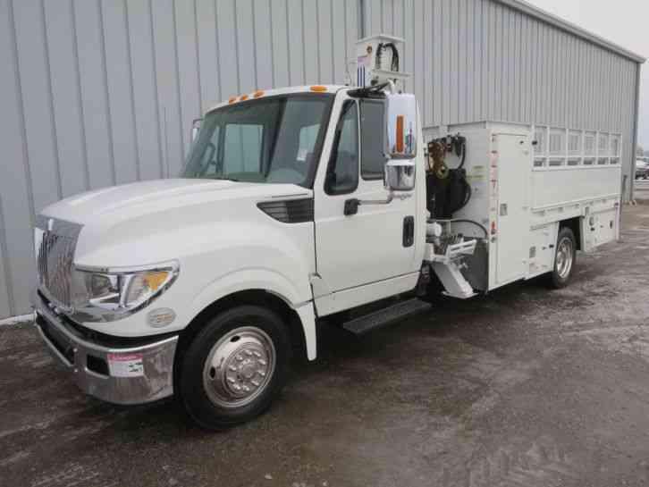 International Terrastar 2013 Utility Service Trucks